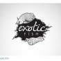 06_logo_exotic